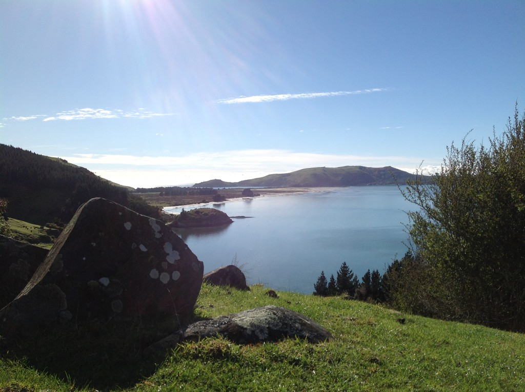 View towards Tairoa Head from the top of Smith's Hill, just behind the house