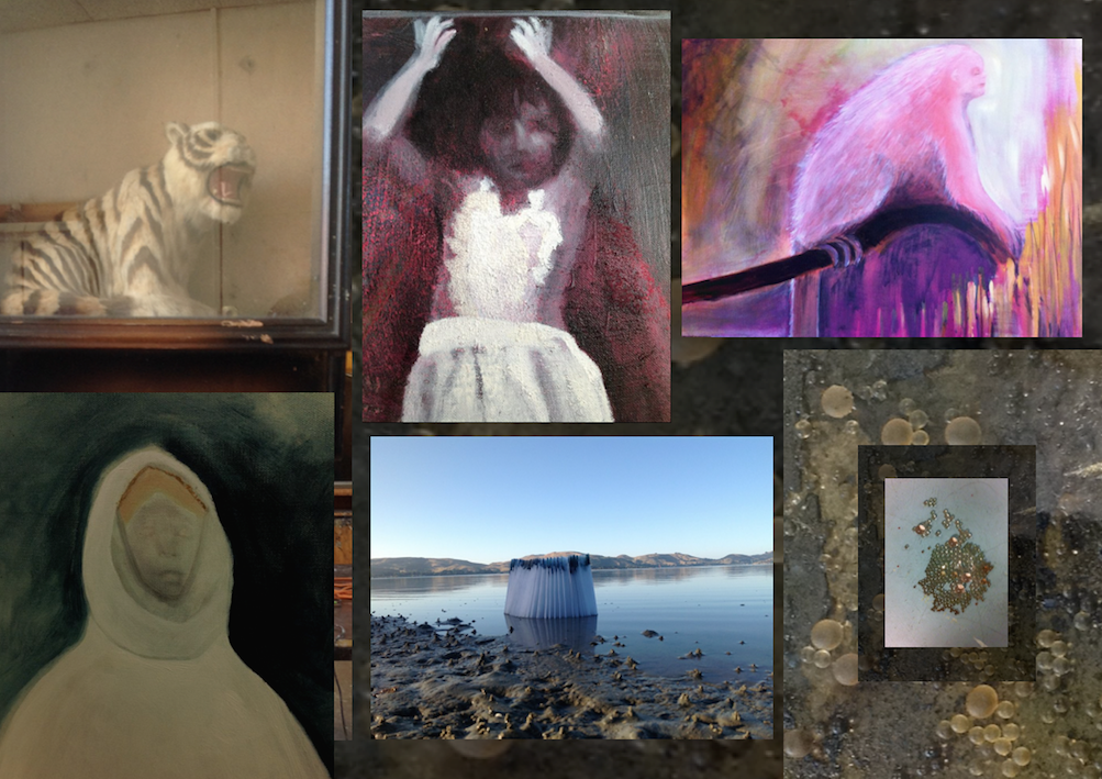 Sally's Gallery in Port Chalmers