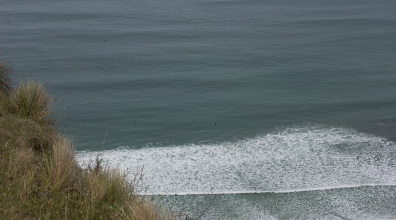Surfing at Aramoana
