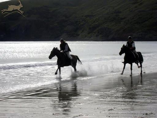 beach_ride_aramoana_6_resize